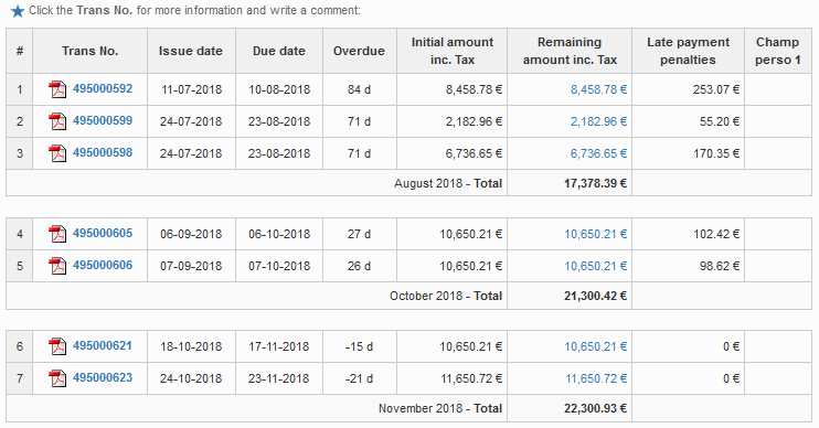 Statement of account by months